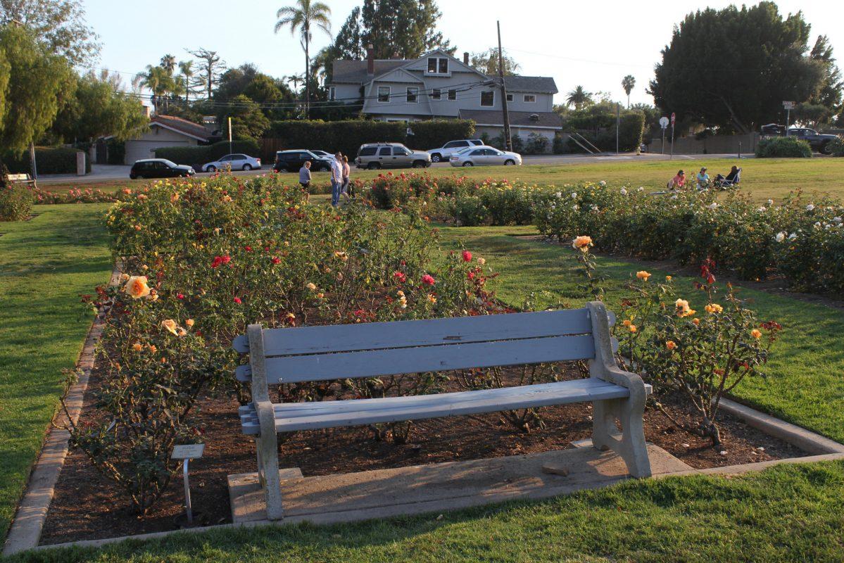 Amazing Santa Barbara Botanical Gardens Ideas - Brown Nature Garden ...
